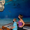 Up to 41% Off Admission to Calvert Marine Museum
