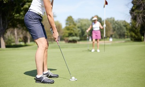 Golf DXB: 60-Minute Golf Lesson for Up to Four at Golf DXB (Up to 56% Off)
