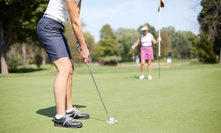 One, Two, or Four Discount Cards for Ironwood Golf Club and Gray Eagle Golf Club (Up to 89% Off)