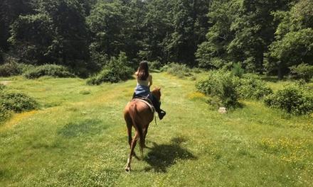 Passeggiata a cavallo a 19,92€euro