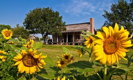 Admission for Two, Four, or Six to George Ranch Historical Park in Richmond (Up to 53% Off)