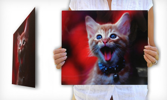 "Custom Photo on Metal: $39 for a 16""x20"" Custom Photo on Metal from Picture It On Canvas. Shipping Included ($153.95 Total Value)."