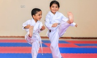 Up to Six Karate or Kung Fu Sessions at Universal Martial Arts Academy