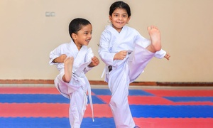 Universal Martial Arts Academy: Up to Six Karate or Kung Fu Sessions at Universal Martial Arts Academy