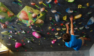 Rock Climbing Day Passes or One-Month or One-Year Membership at Tennessee Bouldering Authority (Up to 61% Off)