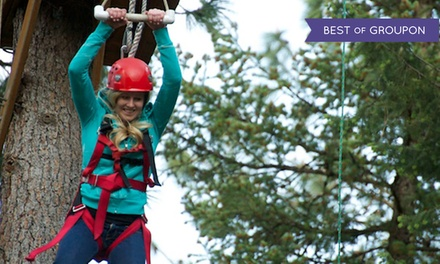 $34 for Aerial Adventure with Zipline, Giant Swing, and Quick Jump at Adventure Dynamics ($65 Value)