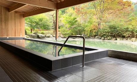 群馬藤岡 森の温泉ホテル