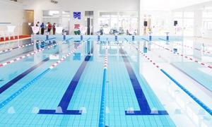 Conselve Nuoto: Carnet fino a 20 ingressi in piscina da Conselve Nuoto (sconto fino a 65%)