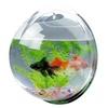 Wall Mounted Acrylic Fish Bowl Bubble and Hanging Terrarium