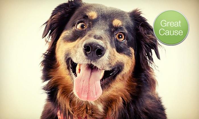 Front Street Animal Shelter, City of Sacramento: $10 Donation toward Canine Heartworm Treatment
