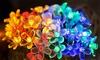 Battery-Powered LED Sakura Decorative Light