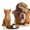 50% Off at Pet Cleaning Crew