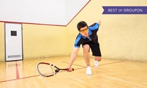Squash Point: 3 godziny gry w squasha od 49,99 zł w Squash Point w Sosnowcu (do -50%)