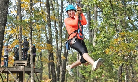 30- or 45-Minute Zipline Tour with Frequent Flyer Card from Eco Zipline Tours (50% Off)