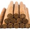 Cigar-Trail Samplers