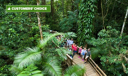 Daintree, Cape Trib and Bloomfield: 1-Day Safari Experience with Wildlife Watching and River Cruise, Cairns QLD