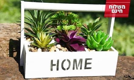 צמחי נוי מלאכותיים במגוון צורות וגוונים, אינם דורשים תחזוקה שוטפת ומקשטים כל חלל! כולל משלוח חינם