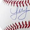 World Series Champions Houston Astros Rawlings Autographed Baseball
