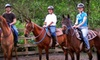 Morris's Shadow Mountain Stables - Lea Hill: Horseback Rides and Introductory Lessons at Morris's Shadow Mountain Stables (Up to 55% Off). Three Options Available.