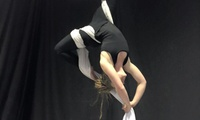 One ($10) or Three ($29) 1-Hour Aerial Allsorts Classes at Cirque Fit - Aerial Silks (Up to $67.50 Value)