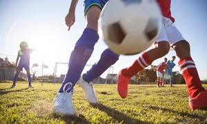 FUNdaMENTAL Skills Soccer Training: $60 for $115 Worth of Products — FUNdaMENTAL Skills Soccer Training