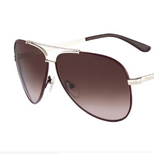f795bca55f61 Salvatore Ferragamo Sunglasses | Groupon