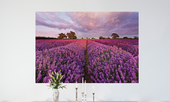 """6' x 4' 2"""" or 5' 9"""" x 3' 9"""" Wall Murals: 72""""x50"""" or 69""""x45"""" Wall Mural. Multiple Options Available. Free Returns."""