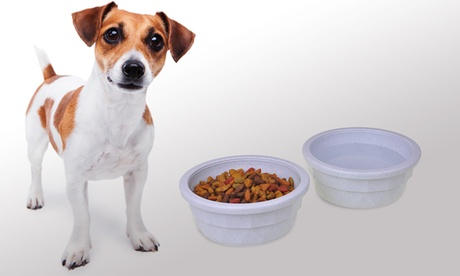 Van Ness Crock-Style Plastic Pet Dishes (2-Pack) f68d87ca-18b9-11e7-9337-00259060b5da