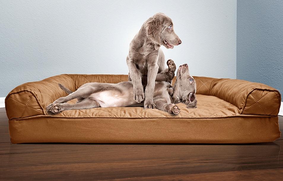 Sofa-Style Orthopedic Pet Bed Mattress