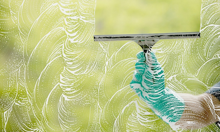 Worried Bird Window Washing - Salt Lake City: Window Cleaning and Restoration with Hard-Water Treatment from Worried Bird Window Washing (Up to 55% Off).
