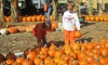 Up to 53% Off Fall Activities at Wheel Fun Rentals - Chicago