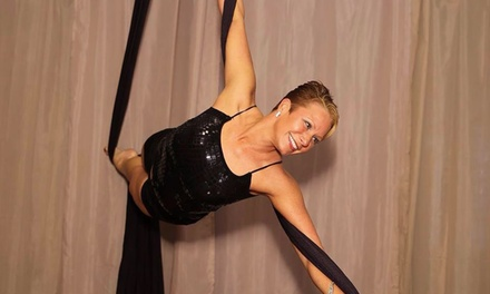 Two Aerial Silk Dance & Fitness Classes or Private Party for Up to 10 at Pittsburgh Dance Center (Up to 60% Off)