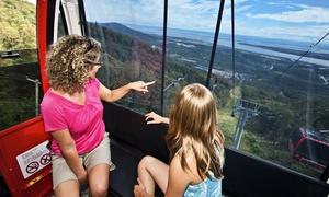 Mont Sainte Anne - Stoneham: Aller-retour en télécabine pour un adulte ou une famille au Mont Ste-Anne (43 % de rabais)