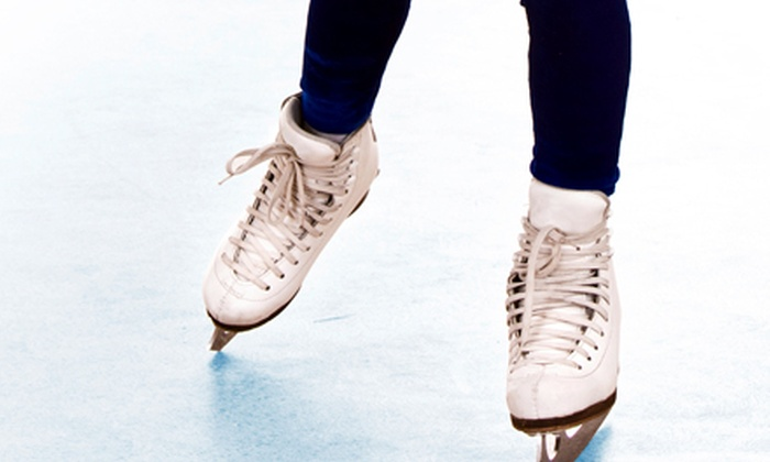 Westchester Skating Academy - Greenburgh: $15 for an Ice-Skating Lesson with Skate Rental and Public-Skate Admission at Westchester Skating Academy ($30 Value)
