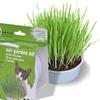 Van Ness Cat Oat Grass Garden Kit (6-Pack)