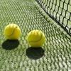 Pista de pádel o de tenis