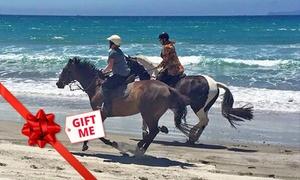 Waipu Horse Adventures: Beach Horse Trek for One (From $64) or Two People (From $125) at Waipu Horse Adventures (From $80 Value)