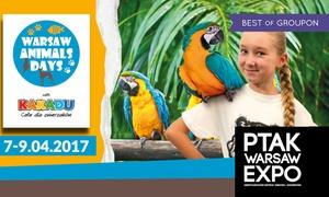 Warsaw Animals Days: Od 29,99 zł: bilety na targi Warsaw Animals Days w Ptak Warsaw Expo w Nadarzynie (do -58%)