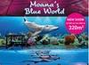 Boudewijn Seapark : parc d'attractions en famille