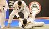 Manchester Brazillian Jiu-jitsu (RLM Training, LLC) - Manchester: Muay Thai or Jiu-Jitsu Classes at Manchester Brazilian Jiu-Jitsu (Up to 75% Off). Two Options Available.