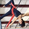 Up to 69% Off Aerial Classes