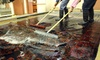 Choices Cleaners - Midtown Manhattan: $294 for $600 Worth of Rug and Carpet Cleaning — Choices Cleaners