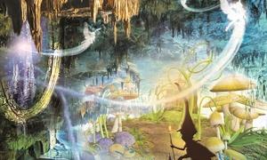 """De Grotten van Han: Licht & geluidspektakel """"Een Nacht in de Grot"""", een wandelparcours in de Grotten van Han voor €12"""