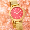 Boum Women's Watches Feroce Collection