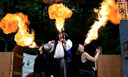 image for Admission or Season Pass to The Great Lakes Medieval Faire (Up to 33% Off). Four Options Available
