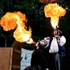 Up to 33% Off Admission to The Great Lakes Medieval Faire