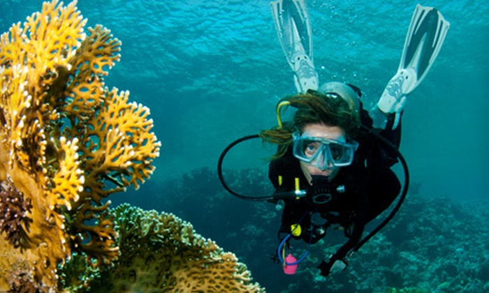 Caribbean Dreams Diving - Calgary: $164 for a PADI Open Water Diver Certification Course with Four Dives at Caribbean Dreams Diving ($375 Value)