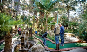 Adventure Golf: Adventure Golf Experience from R80 for Two at Adventure Golf - Three Branches (Up to 53% Off)