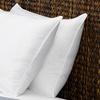 Signature Memory-Fiber Pillow (1- or 2-Pack)