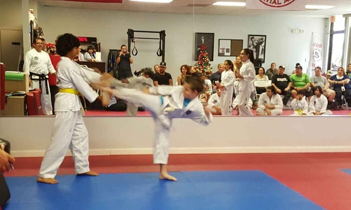 Young Dragons Martial Arts - C.S. Village: $50 for $100 Worth of Services — Young Dragons Martial Art